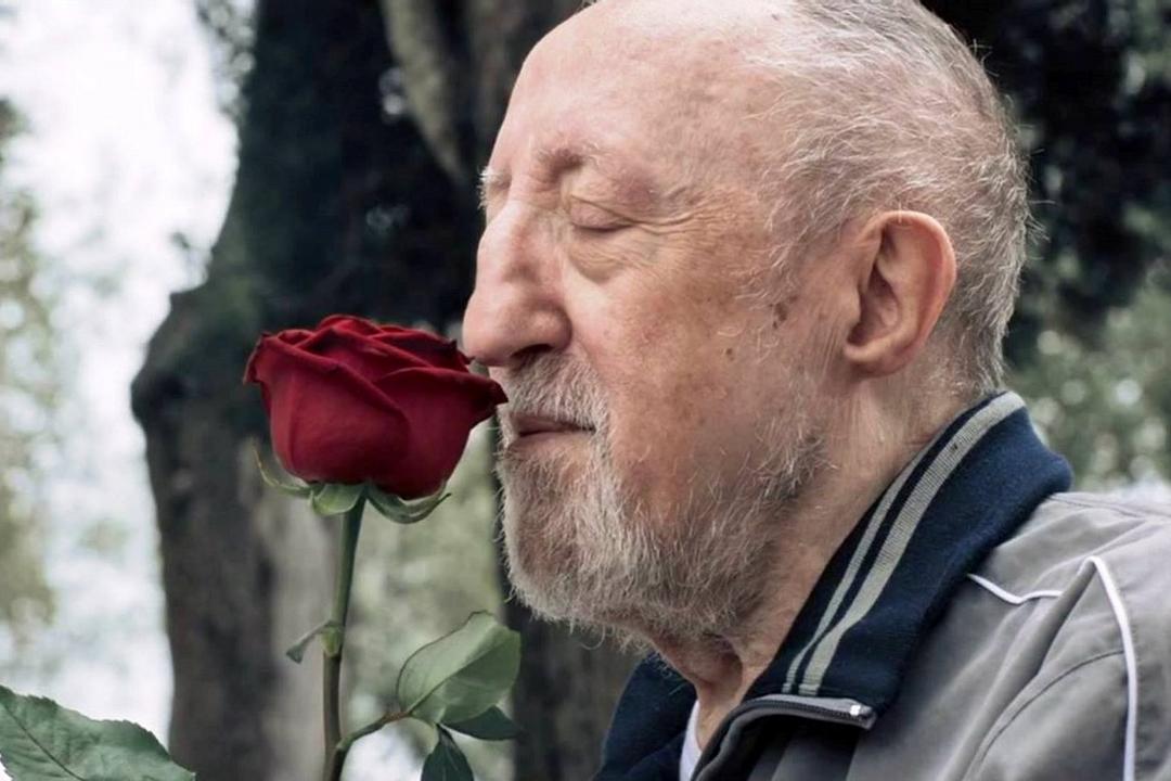 Chi salverà le rose?